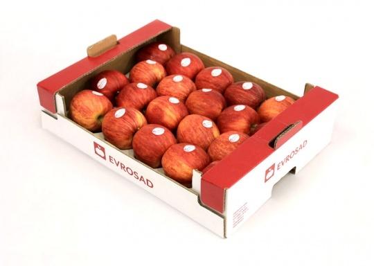 کارتن میوه صادراتی کارتن سیب